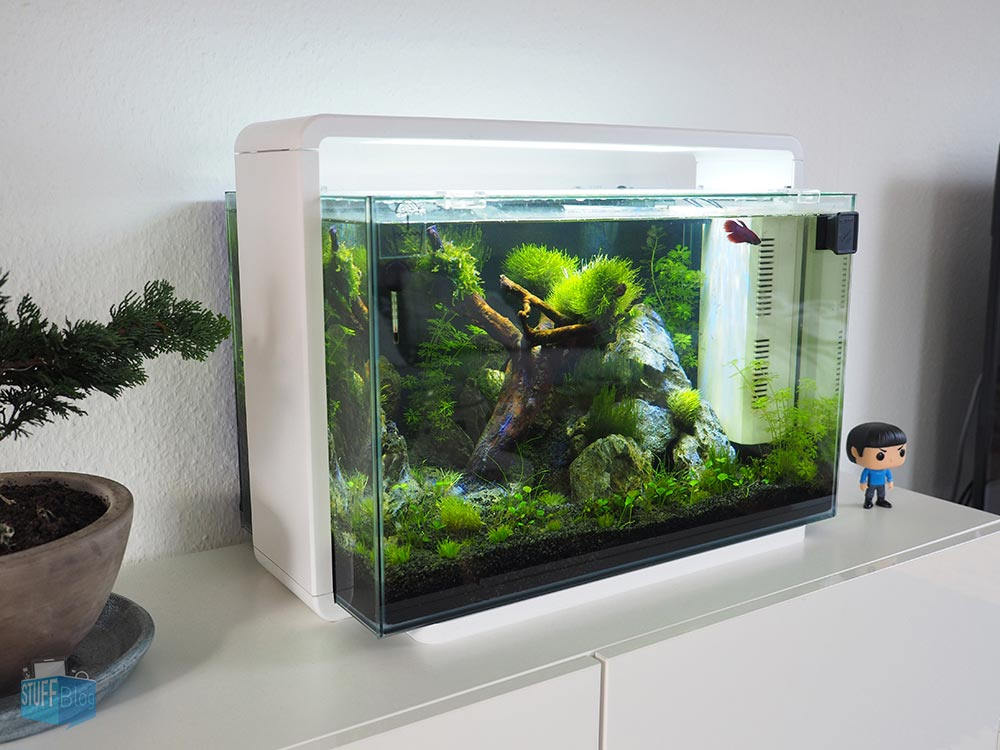 Superfish home design aquarium im stuffblog review for Design aquarium